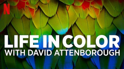 Life in Colour with David Attenborough- IMDb rating- 8.5/10