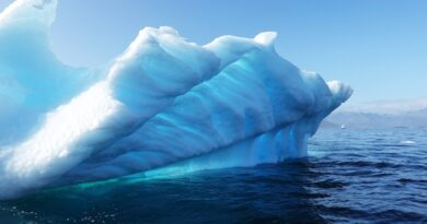 Antarctica glaciers are crying, but are we doing anything for it?