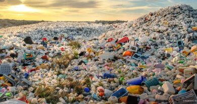 The future of the Plastic Waste Crisis is in the hands of 20 Companies
