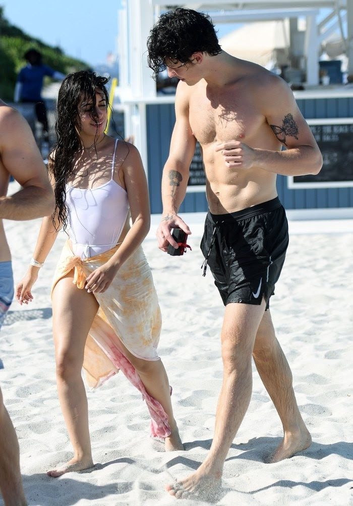 Camila Cabelo and Shawn Mendes.